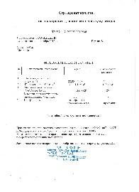 Электролит плотность 1,27 (5л)